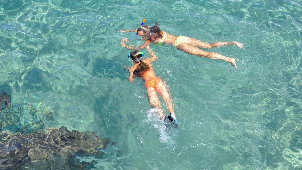 TOP SIX TOURS OF BARBADOS snorkeling