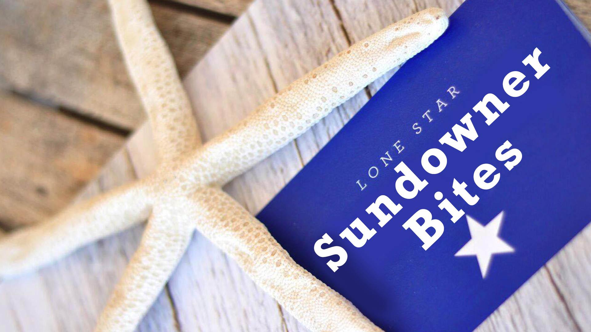 Sundowner Bites Menu at the Lone Star Restaurant Barbados